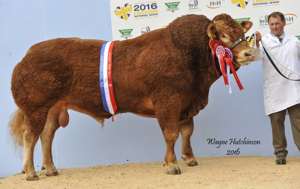 Trueman Jagger - Male and Overall Champion