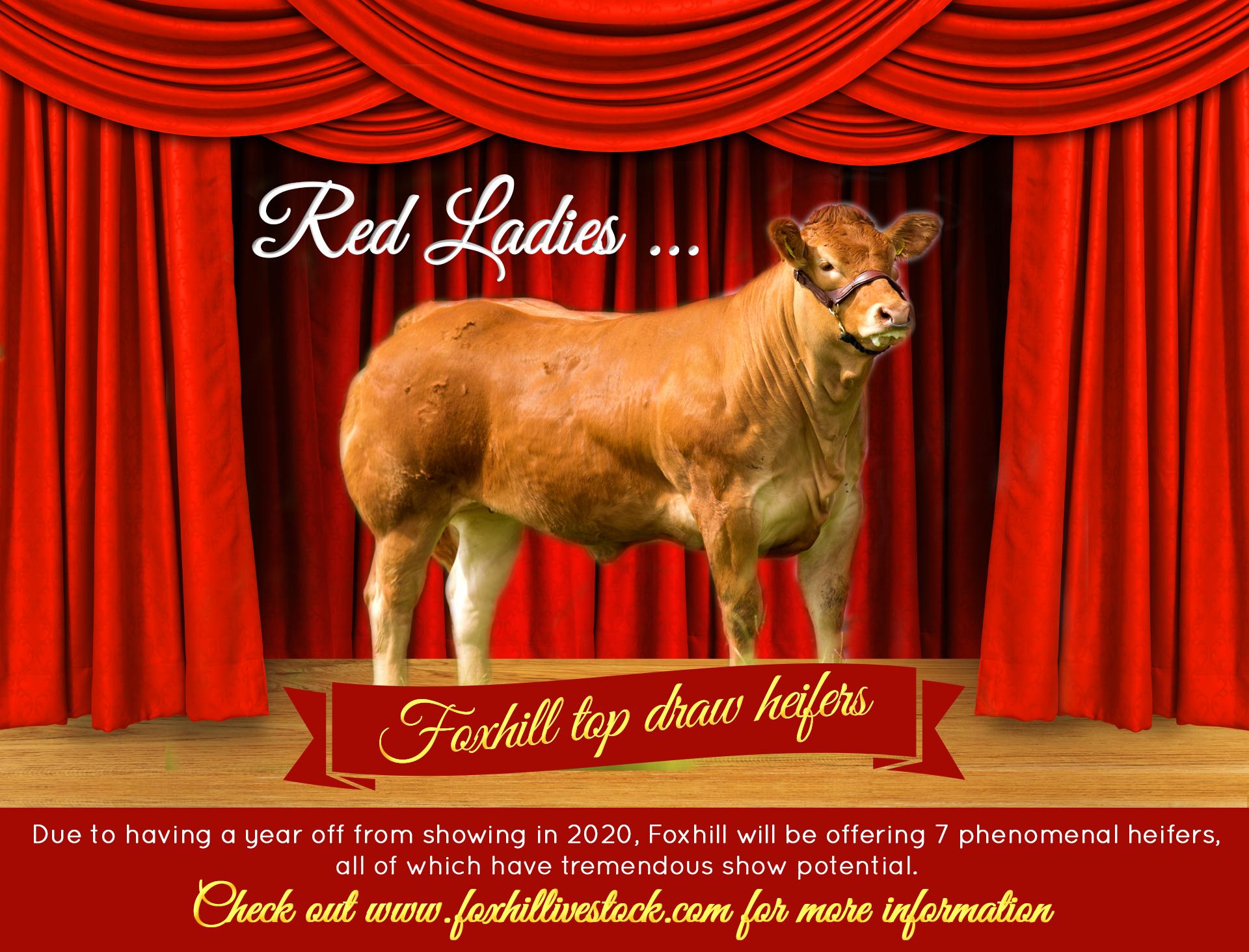 red ladies edit 2